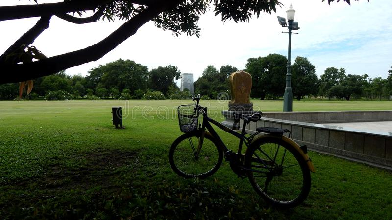 自行车在公园 免版税库存照片