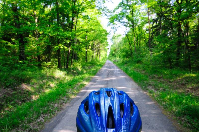 自行车森林路径 免版税库存图片