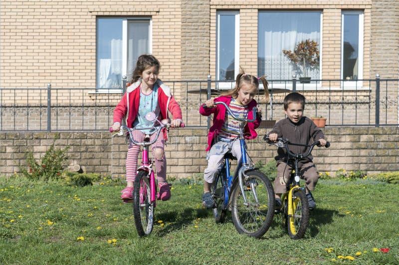 自行车的三个孩子 骑他们的自行车的三个小骑自行车者画象  库存图片