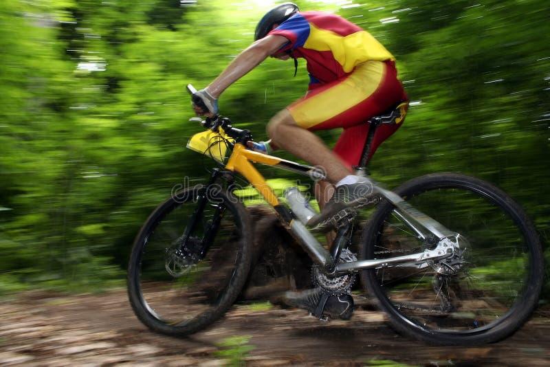 自行车竟赛者 免版税库存照片