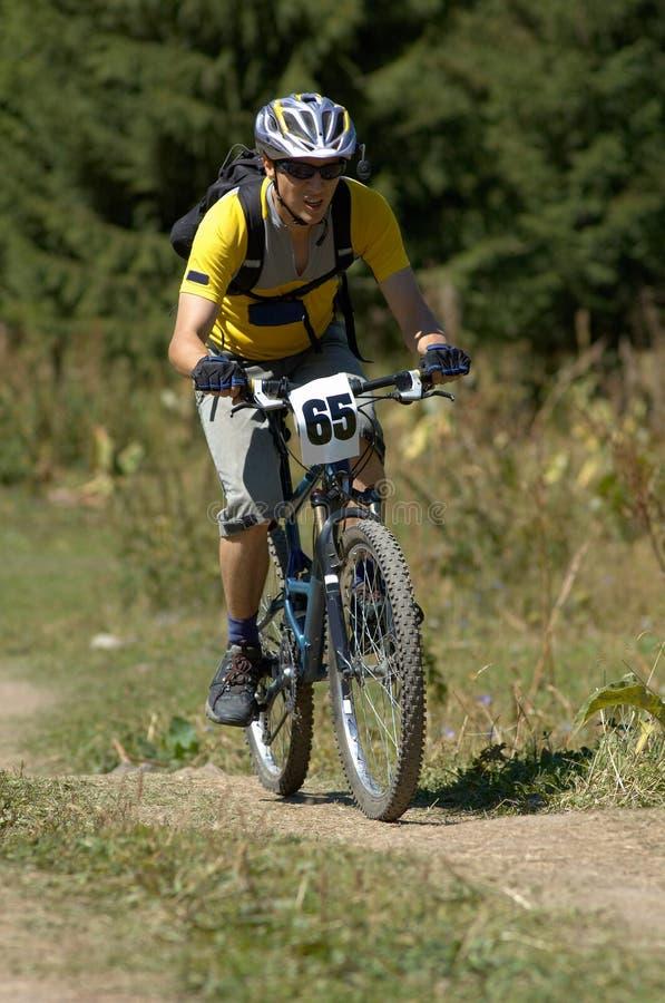 自行车竟赛者 库存照片