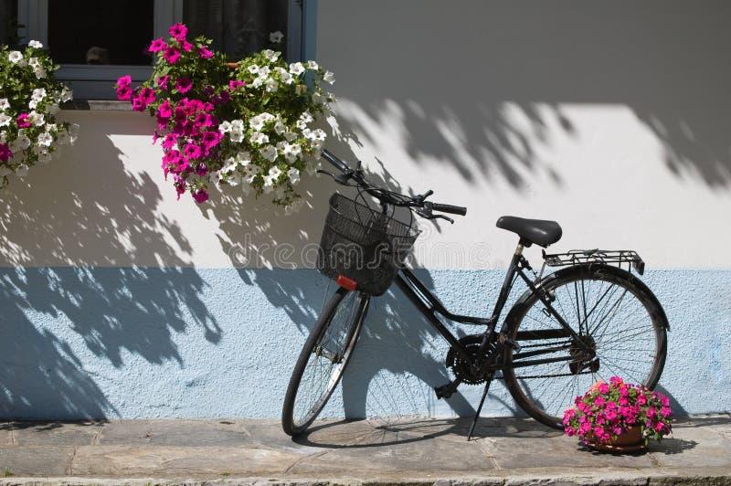 自行车花 免版税库存图片