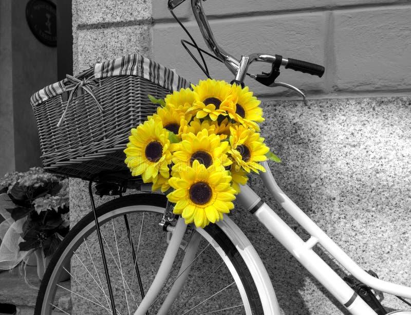 自行车装饰用向日葵 北京,中国黑白照片 免版税库存照片