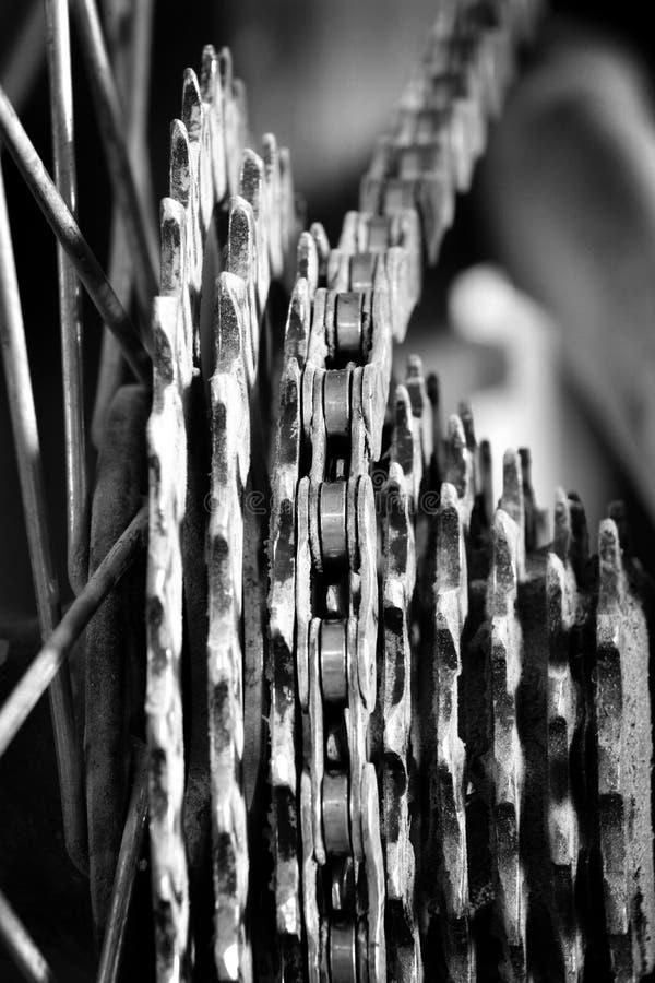 自行车链子和齿轮嵌齿轮链接 库存图片