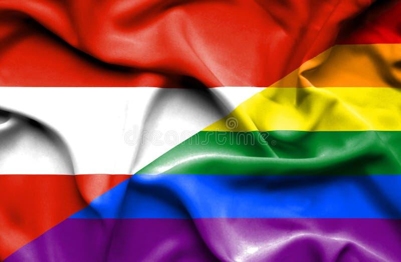 自豪感和奥地利的挥动的旗子 皇族释放例证