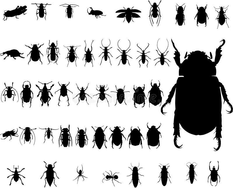 臭虫昆虫剪影 库存例证