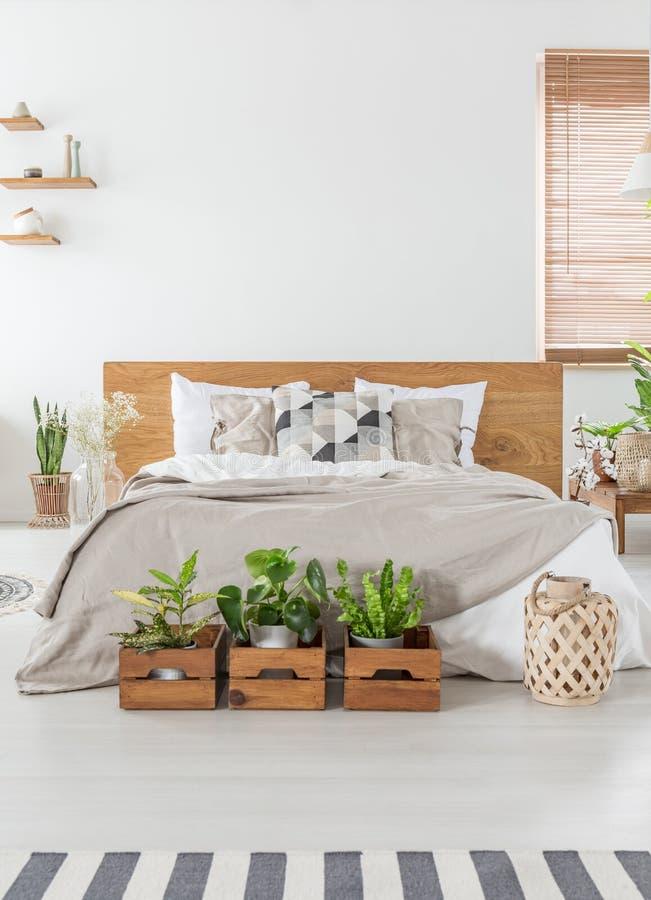 舒适卧室内部的真正的木箱的照片与一个双人床的,植物和空的墙壁在背景中 安置您的图表 库存照片