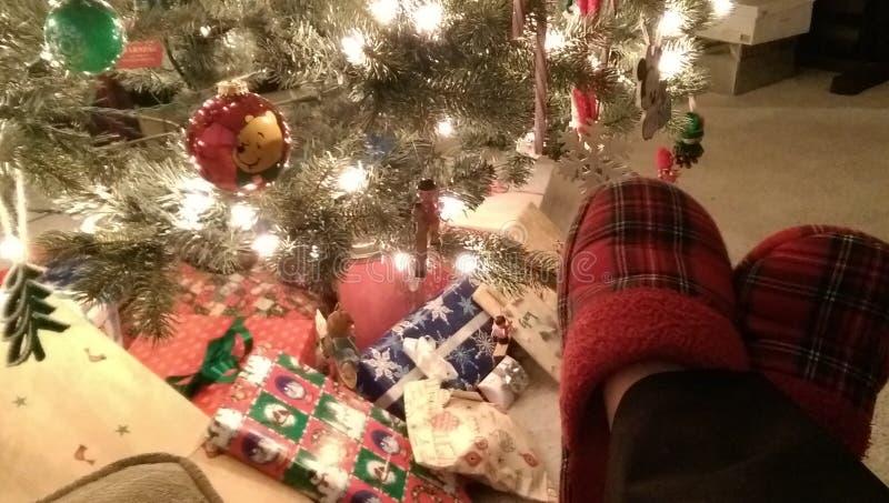 舒适由圣诞树 免版税图库摄影