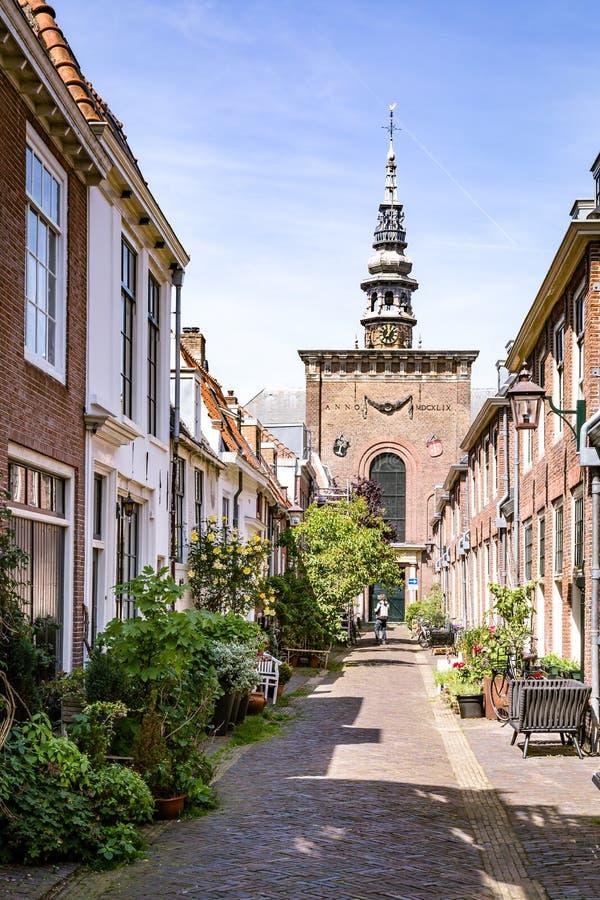 舒适绿色街道在哈莱姆在荷兰 库存照片