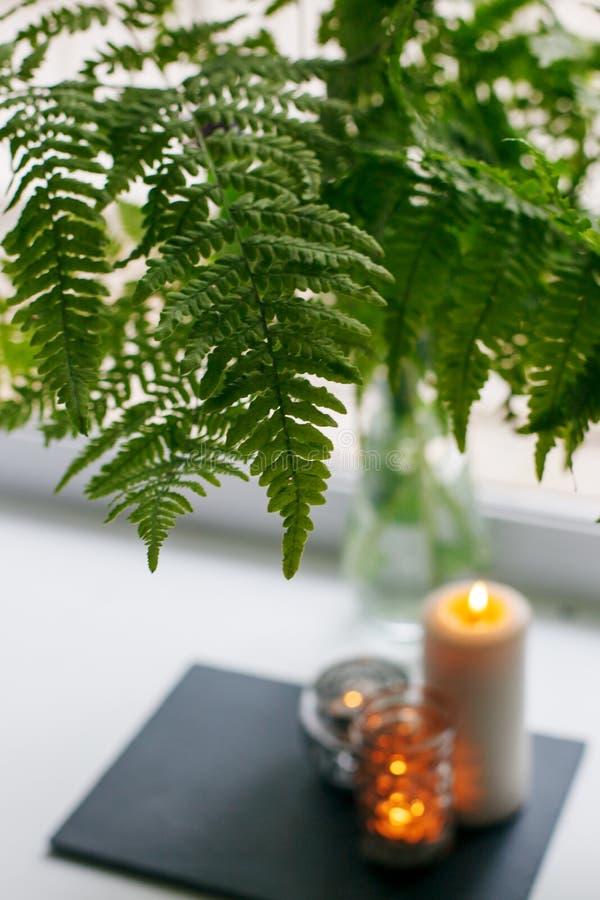 舒适静物画:蕨花束,在窗台的燃烧的蜡烛 最小拔去平静放松概念,季节性周末,温泉, 免版税库存照片