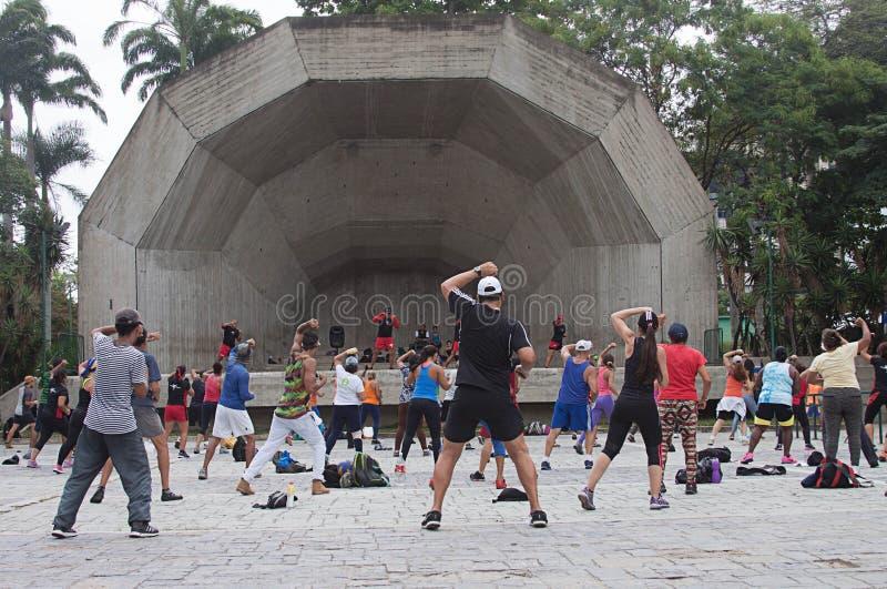 舞蹈疗法在公园在加拉加斯 库存照片