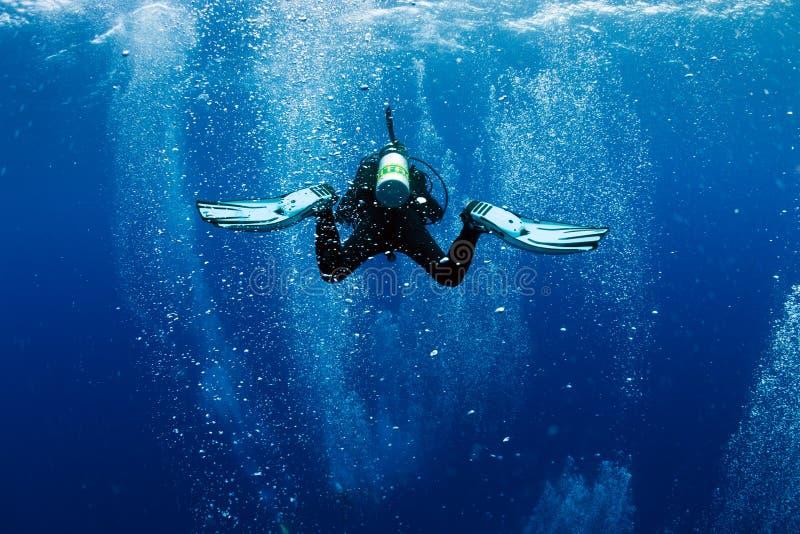 航空作为泡影潜水员游泳旋涡 库存图片