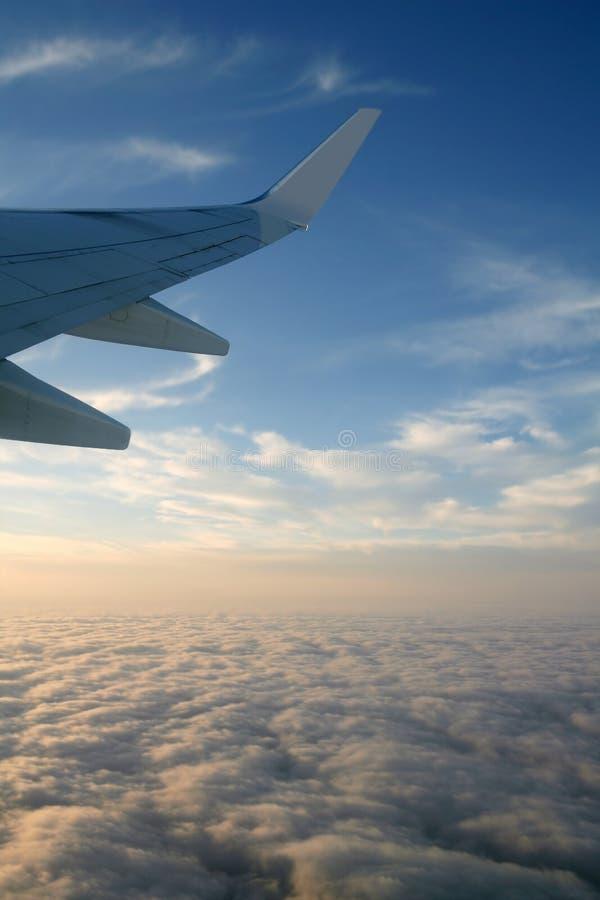 航空器飞机蓝色飞行右侧天空翼 免版税库存图片