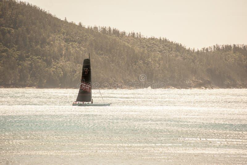 航行在哈密尔顿岛的野燕麦 图库摄影