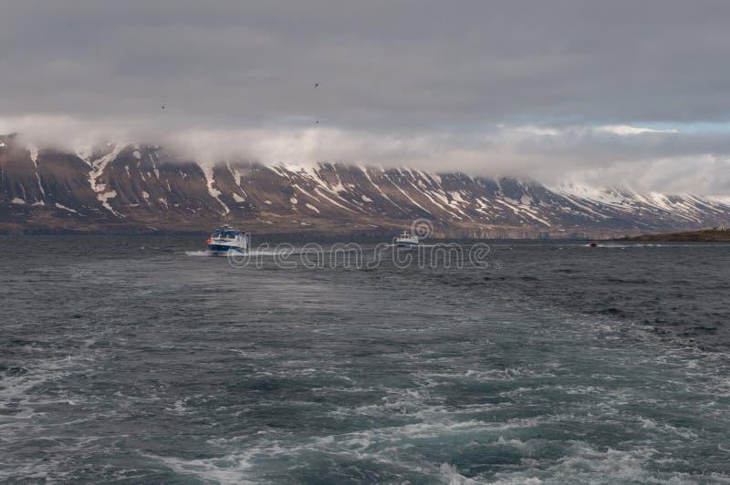 王�����yja��+�,_航行在eyjafjordur冰岛的渔船