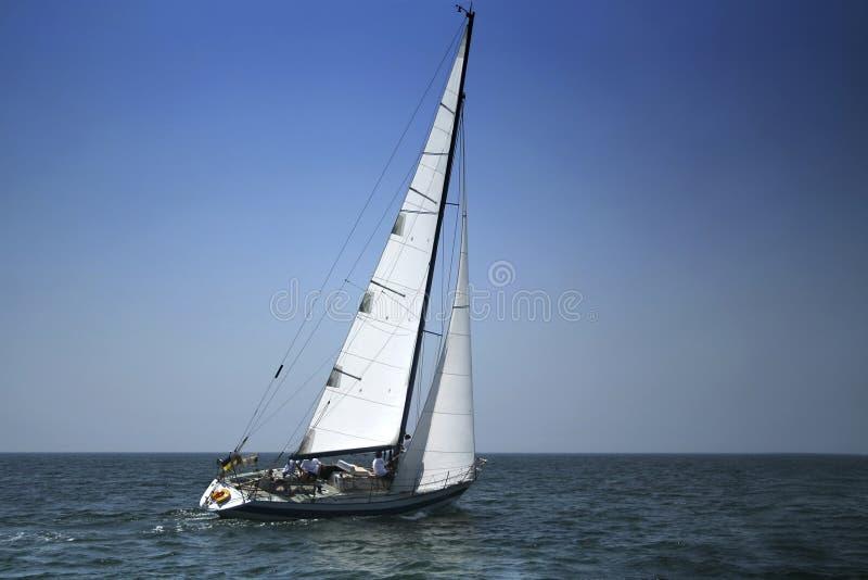 航行白色 库存图片