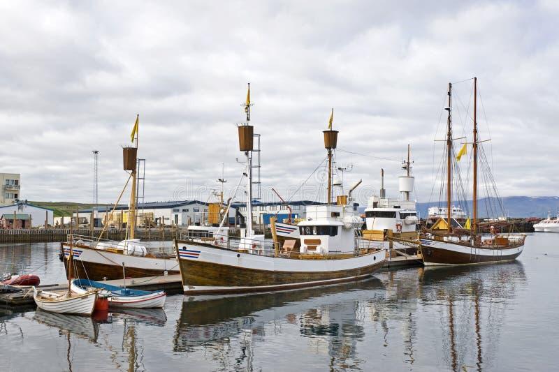舰队注意的鲸鱼 免版税库存照片