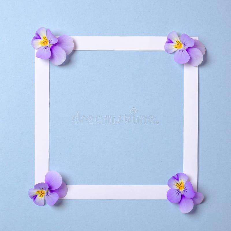 舱内甲板与花瓣的被放置的方形的框架在水彩春天背景 顶视图,花卉框架,抽象设计 邀请, 免版税库存图片