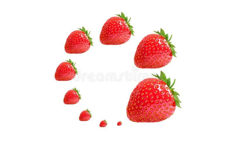 舱内甲板被放置的螺旋构成用在白色背景的草莓莓果 库存图片
