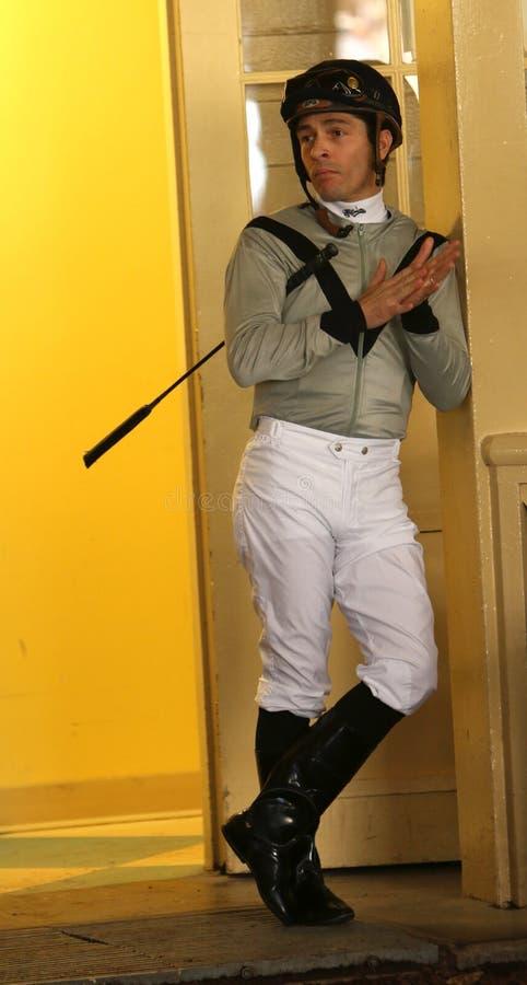 良种骑师何塞瓦尔迪维亚, Jr。 库存图片