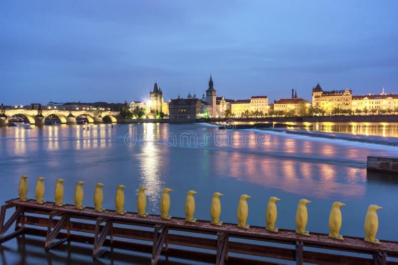 黄色企鹅在布拉格 免版税图库摄影