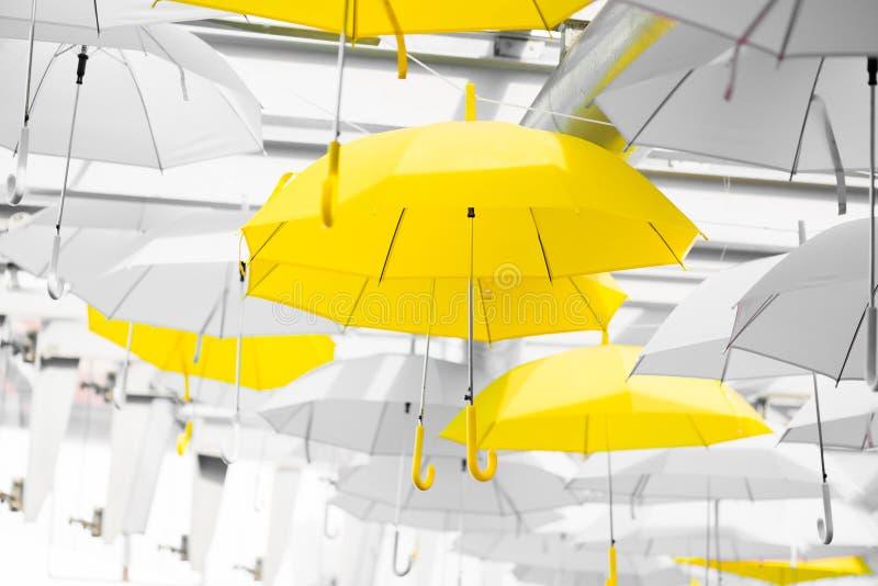 黄色伞 库存图片
