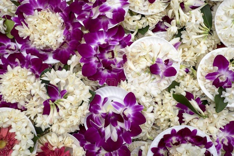 紫色兰花奉献物 免版税库存照片