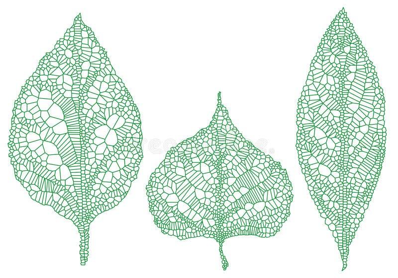 绿色叶子剪影,传染媒介集合 向量例证