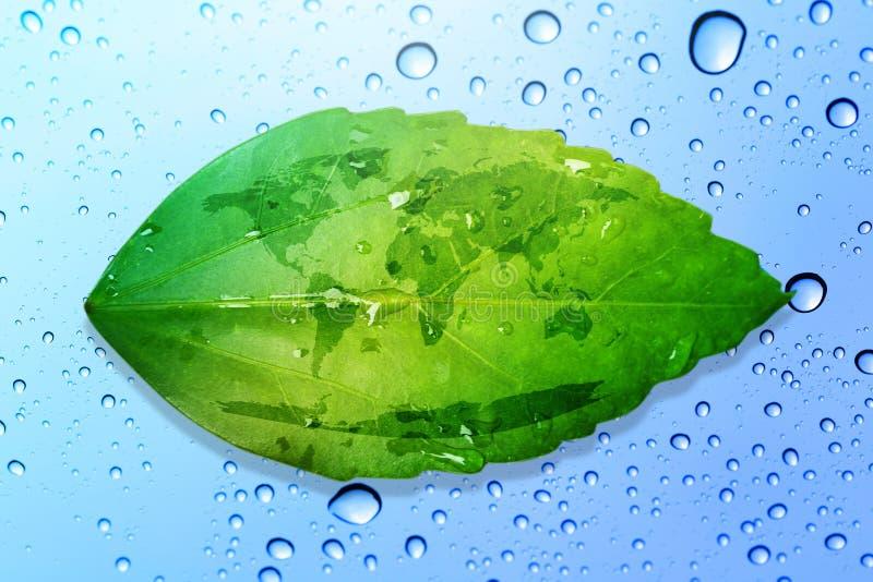 绿色叶子环境概念救球地球和水下降bac 免版税库存图片