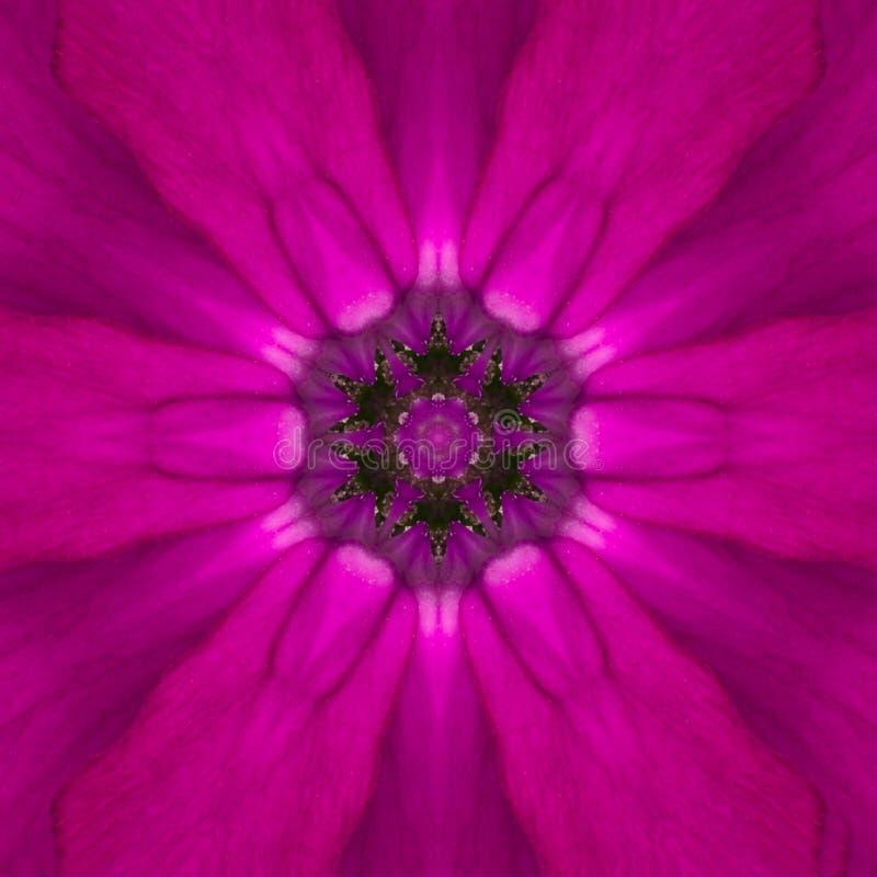 紫色同心花中心坛场万花筒设计 库存图片