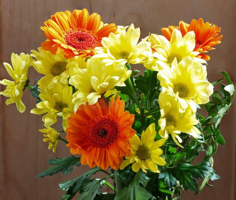 黄色和橙色菊花 库存图片
