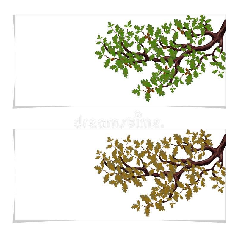绿色和秋天,一个大橡树的一个被染黄的分支与橡子的 飞行物、邀请卡片或者名片 查出 向量例证