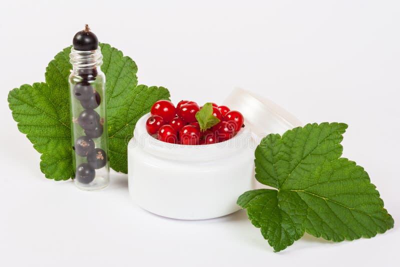 黑色和红浆果化妆用品 免版税库存图片