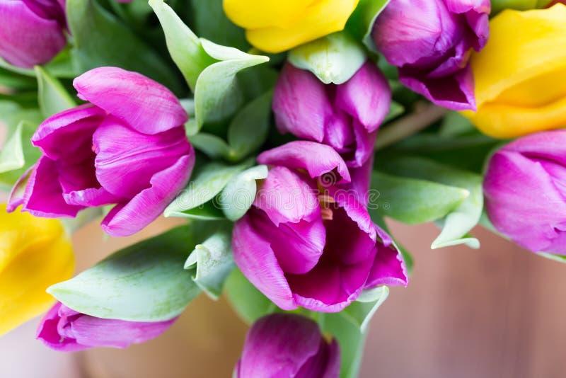 紫色和黄色郁金香花束 在灰色backgrou的更多郁金香 库存图片