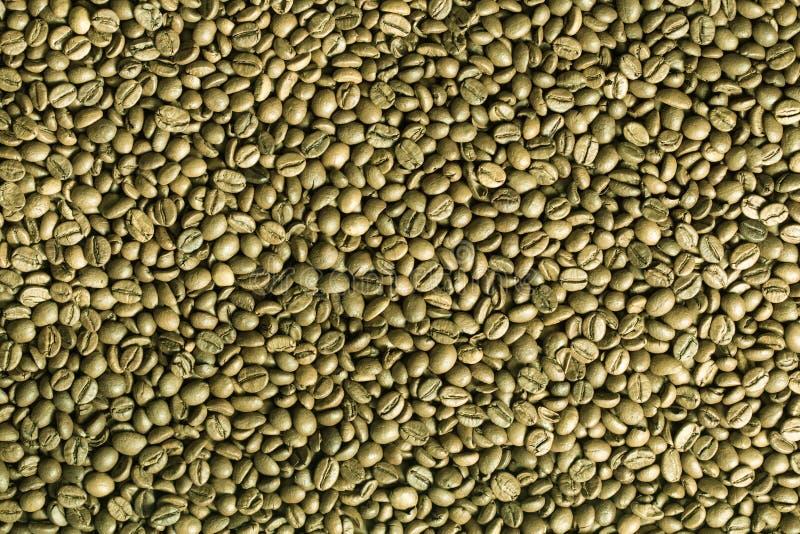 绿色咖啡豆背景。 免版税库存图片