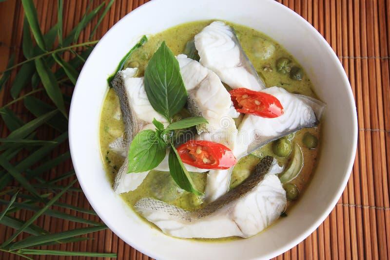 绿色咖喱椰子汤泰国样式用鱼肉 库存照片