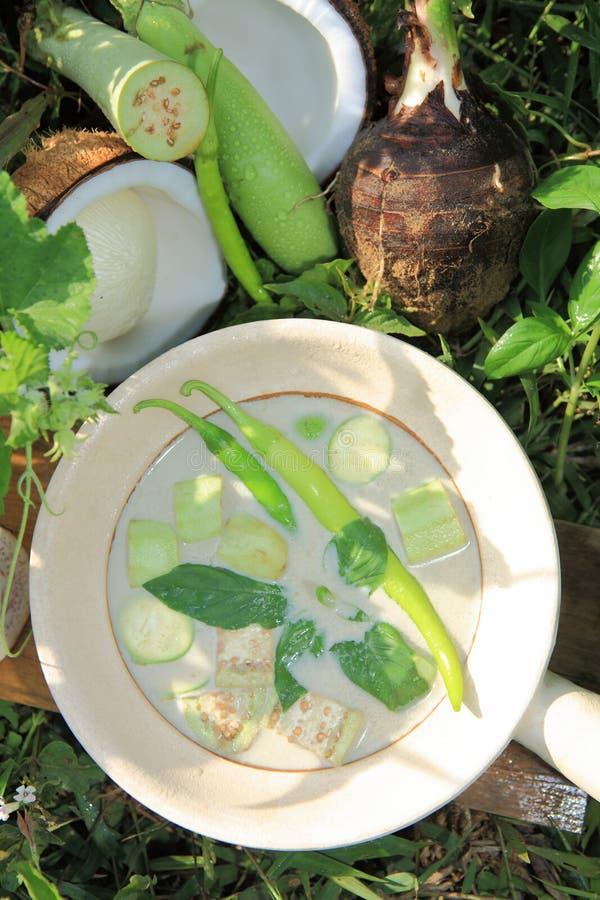 绿色咖喱比例泰国食物 库存照片
