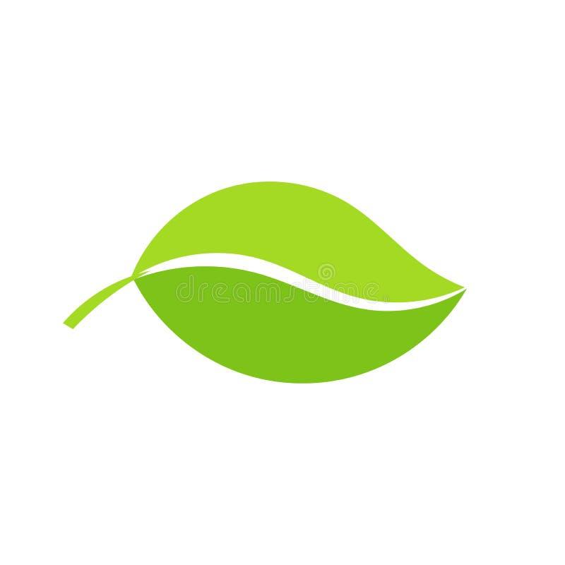 绿色图标例证叶子向量 库存例证