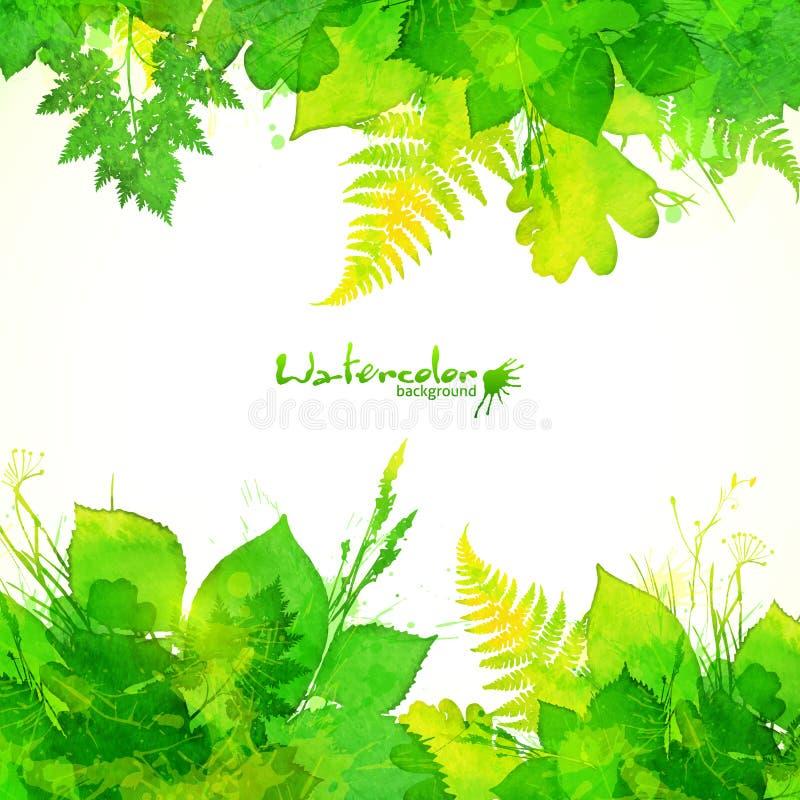 绿色夏天叶子传染媒介背景 向量例证