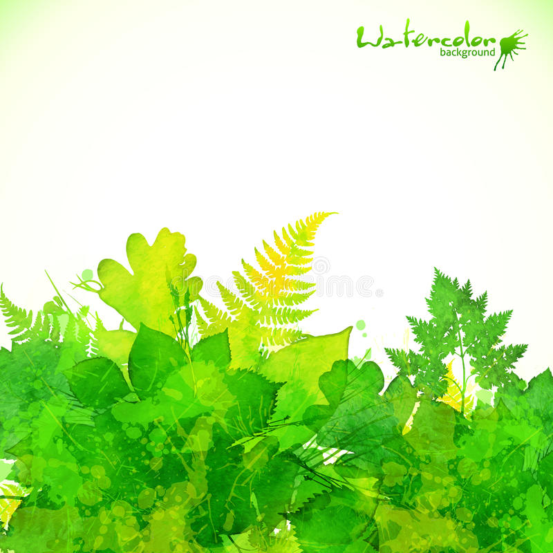 绿色夏天叶子传染媒介背景 库存例证