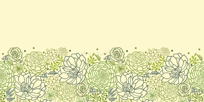 绿色多汁植物水平的无缝的样式 免版税库存图片