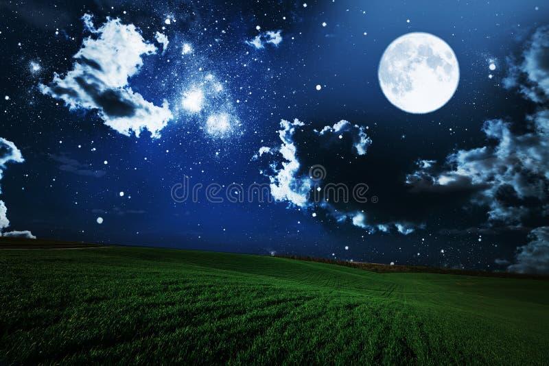 绿色夜领域 星天空 免版税库存照片