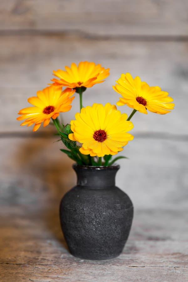 黄色大丁草花束在一个花瓶的在木背景 库存图片