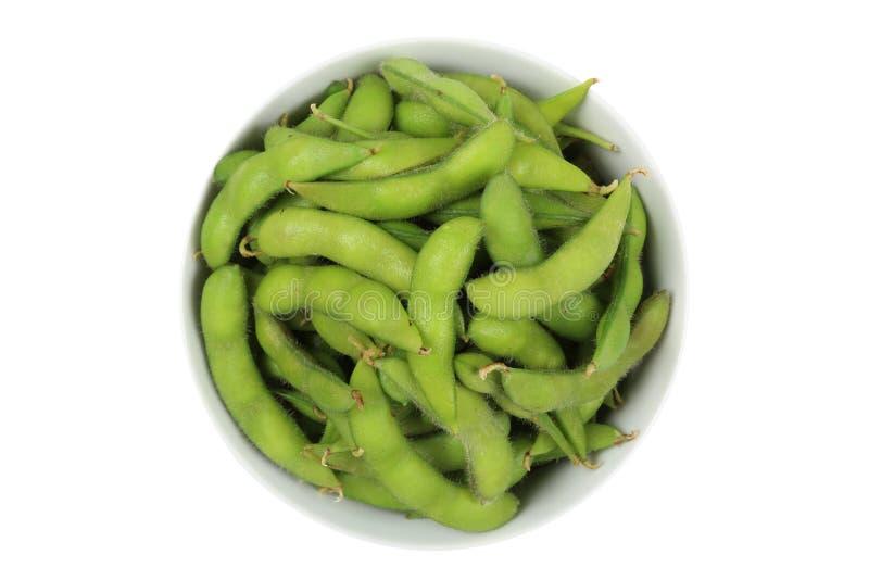 绿色大豆豆 库存照片