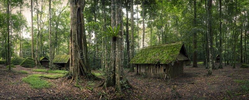 绿色小屋在森林里 免版税库存照片