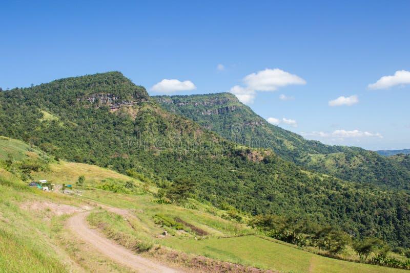 绿色山和蓝天 免版税库存图片