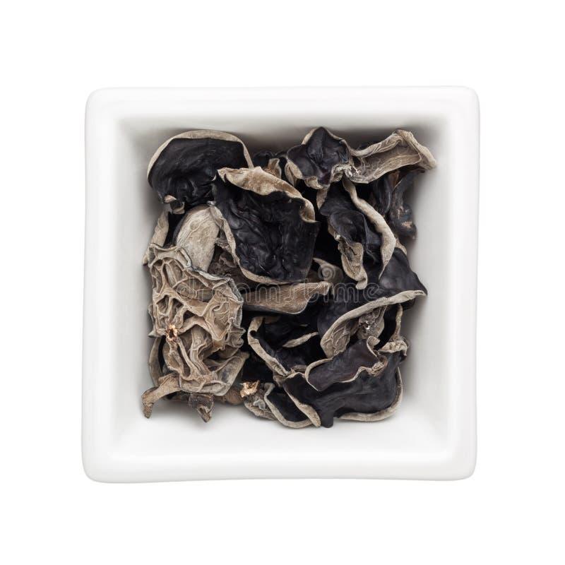 黑色干真菌 库存照片