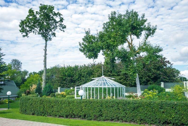绿色庭院和夏天气味 免版税库存图片