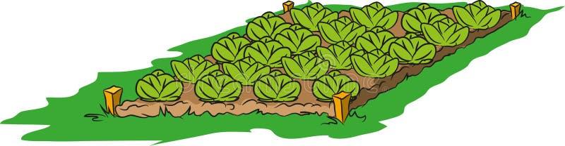 绿色庭院 库存例证