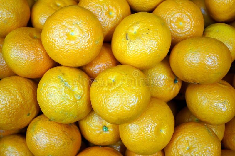 黄色成熟蜜桔堆  免版税库存图片